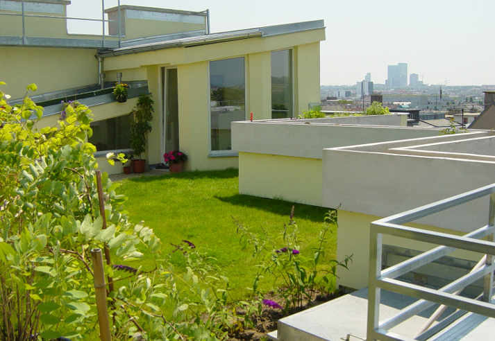 Schwendergasse Dachgeschossausbau